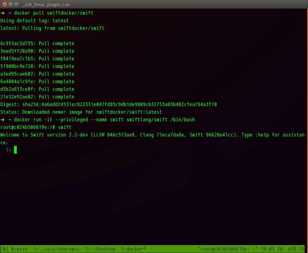 Linux上で動くswift dockerのスクリーンキャプチャ画像
