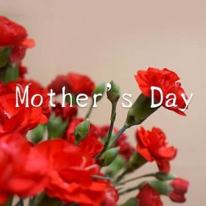 Mother's Dayのテキストとカーネーションの画像