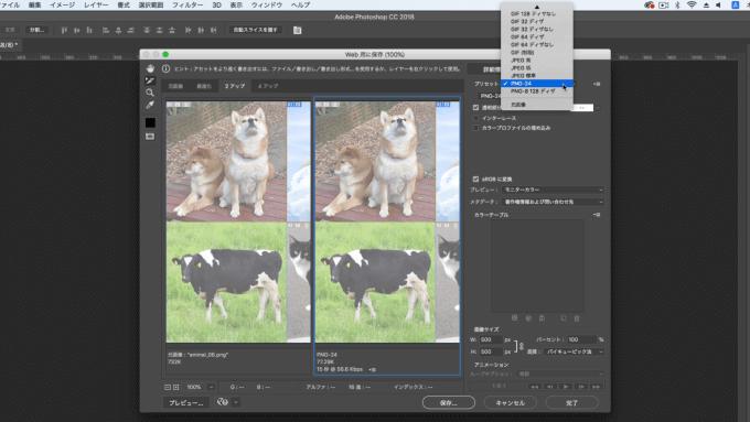 プリセットで画像の形式を確認している画像